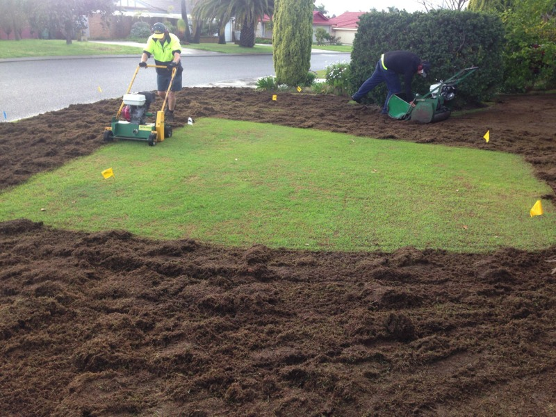 Bluegrass Lawnmowing Service Vertimowing Canning Vale